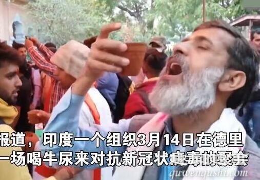 印度聚众喝牛尿 内幕曝光太恐怖了