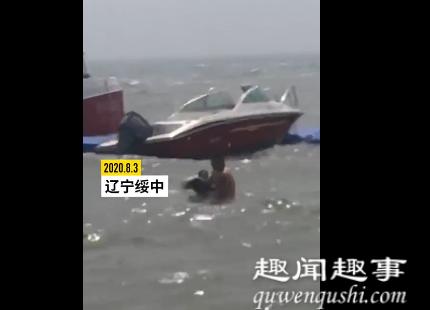 游客海中洗澡时被近2米长江豚撞了一下 随后发生的事令人欣慰真相曝光实在让人震惊