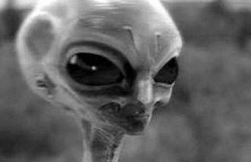 月球上三眼女尸真实身份 内幕曝光简直太吓人了